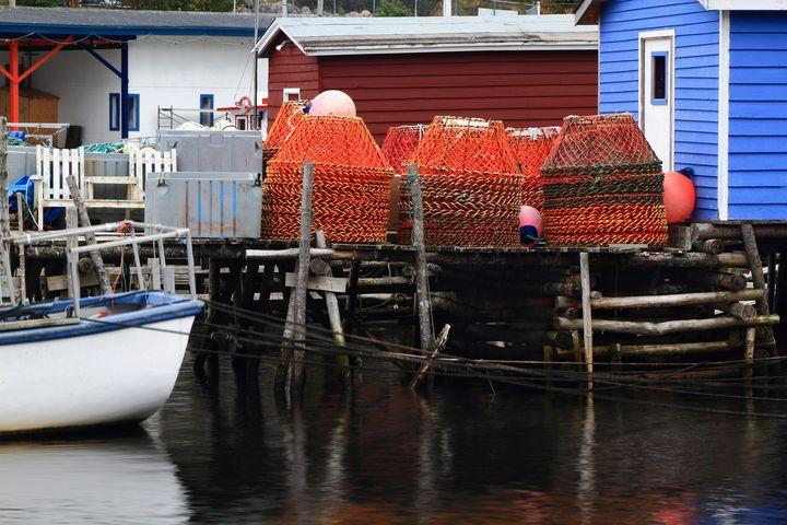 Crab nets on dock. Crab fishery - MORNING LIGHT