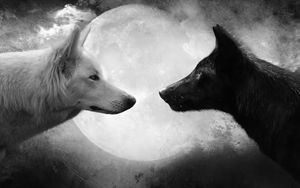 Peace Within Yin&Yang