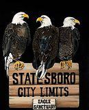 Statesboro City Limits