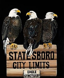 Statesboro City Limits