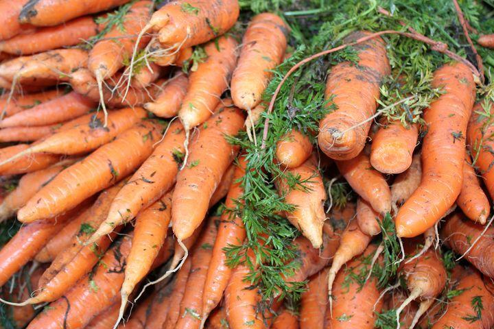 Carrots, Carrots, Carrots - Adirondack Art & Soul