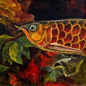 Serious fish