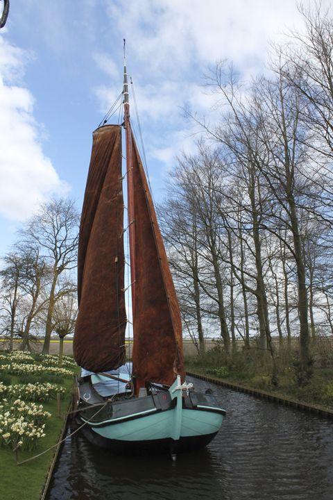 A boat in keukenhof gardens - LAZARO GALLERY