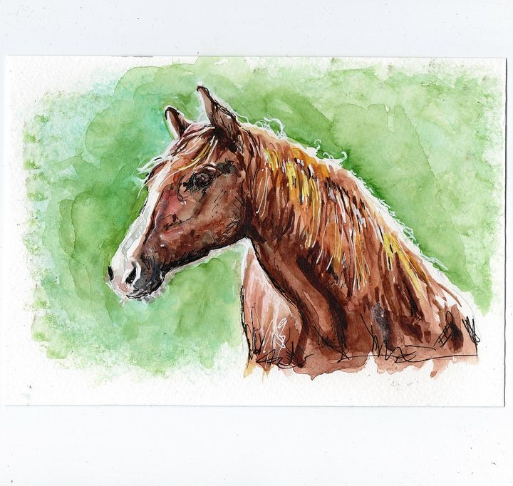 Watercolor/ aquarelle, cheval - voicivoilà