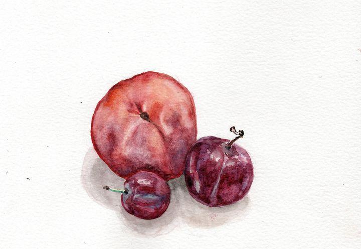 Watercolor, Aquarelle, fruits - voicivoilà