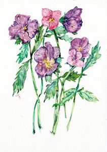 watercolor/Aquarelle, fleurs