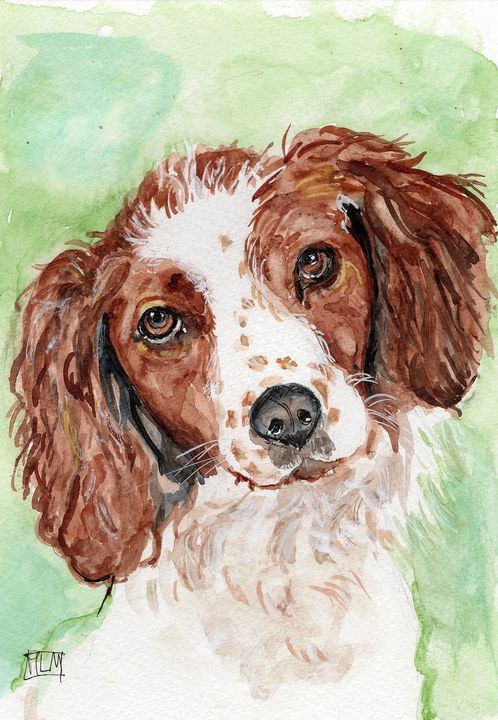 watercolor / aquarelle, signée,chien - voicivoilà