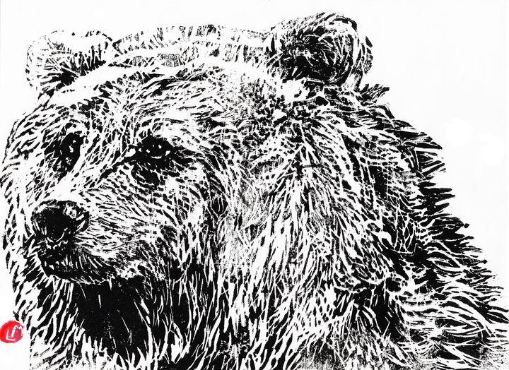 linocut,gravure,bear - voicivoilà