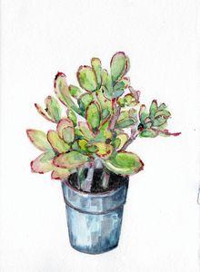 watercolor, aquarelle, cactus