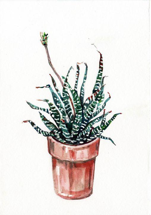 watercolor, aquarelle, cactus - voicivoilà