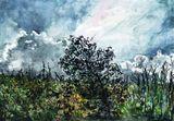 watercolor Aquarelle