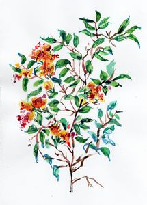 watercolor, aquarelle, fleurs