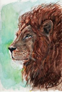 watercolor, lion, Aquarelle, lion
