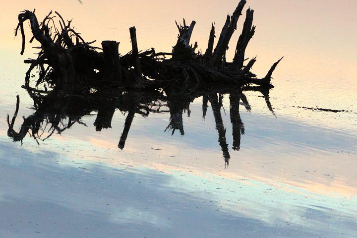 Driftwood Soaring - kt