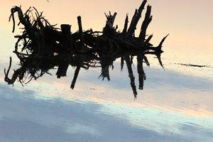 Driftwood Soaring