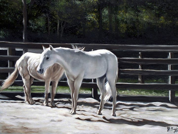 Silver Shadow - Yolanda Barjoud Originals