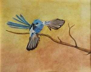 Dancing Fairy Wren - LozsArt