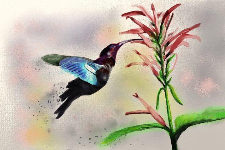 Hummingbird - LozsArt