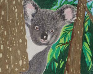 Koala Baby - Dana E.M. Art