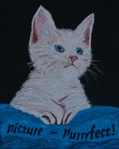 Picture Purrrfect - Dana E.M. Art