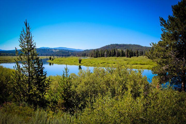 Yellowstone 5 - 727 Jazz & Co