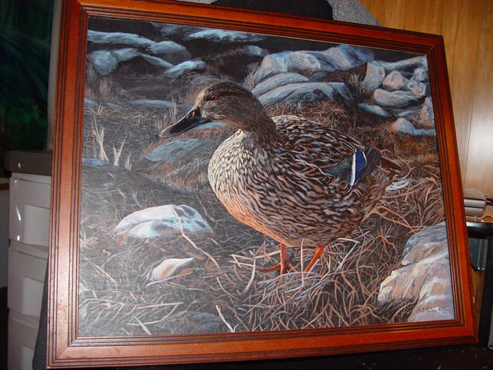 Bart Rulon, Female Mallard - Been To The Sea