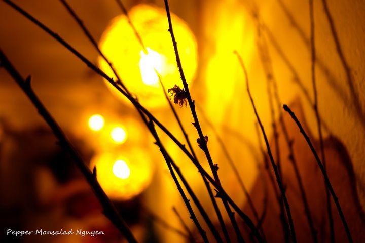 The light (Prototype) - Pepper Nguyen