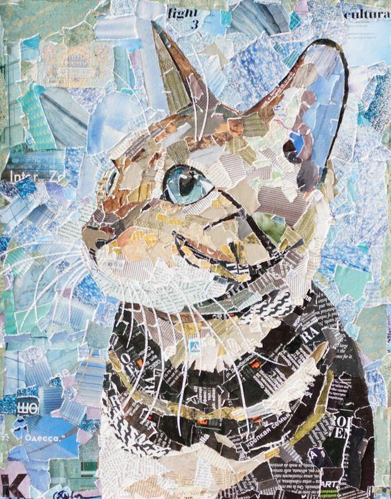 cat looks with hope - yarovaya.art