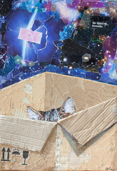 cat in a box - yarovaya.art