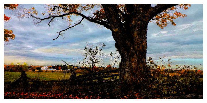 Old Tree at Scotsdale Farm - Jonathan Baldock