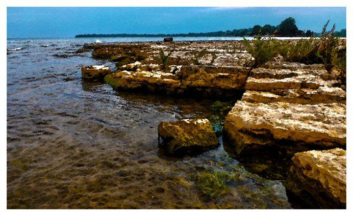 Rock Beach at Selkirk - Jonathan Baldock