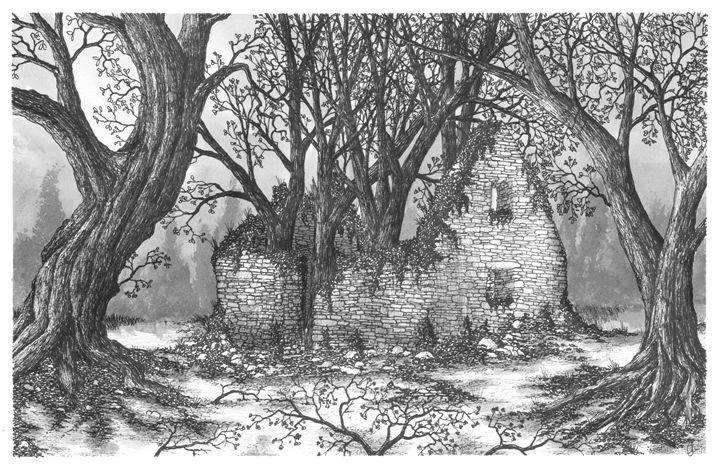 Abandoned Irish Home - Jonathan Baldock
