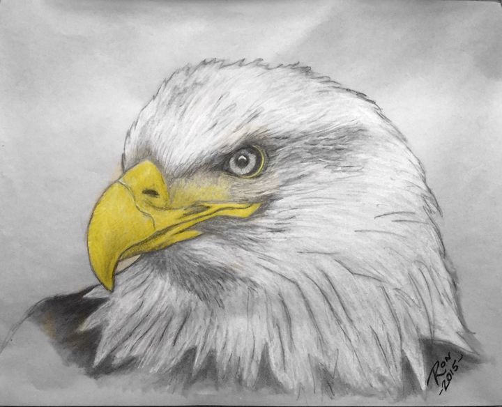 Eagle - Drawings
