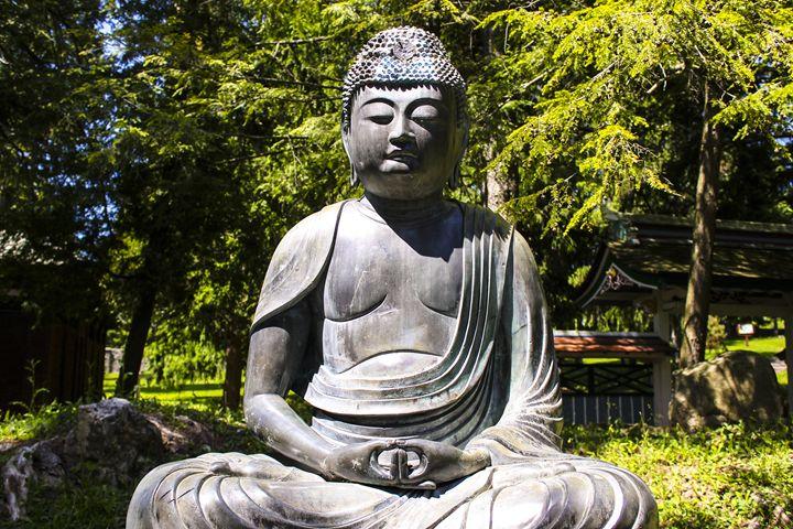Buddha - Harrison Setzler