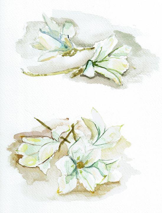 Withering white flowers - Aleksandra_Zmudzinska