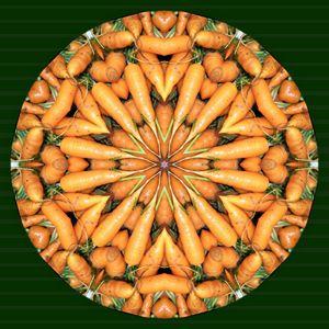 Carrot Kaleidoscope - Digital Crafts