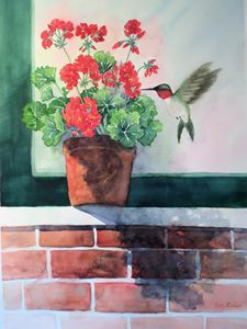 Hummingbird and Geranium