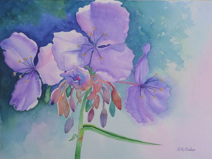 Spiderwort - Bettys Watercolor