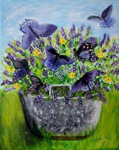 Bucket of Butterflies
