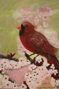 Cardinal in Cherry Blossoms - About Town Artistry