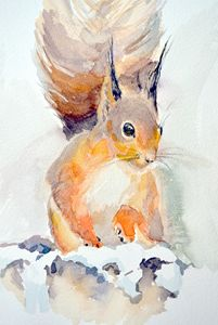 Red Squirrel - Irina Ushakova