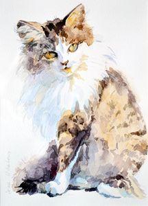 Cat. - Irina Ushakova