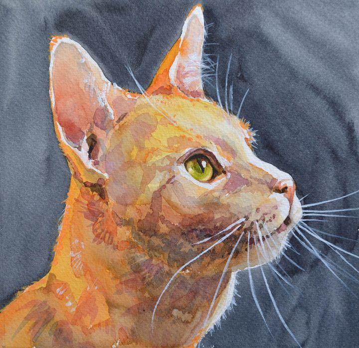 Red cat. - Irina Ushakova