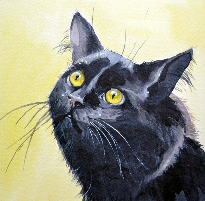 Black cat. - Irina Ushakova