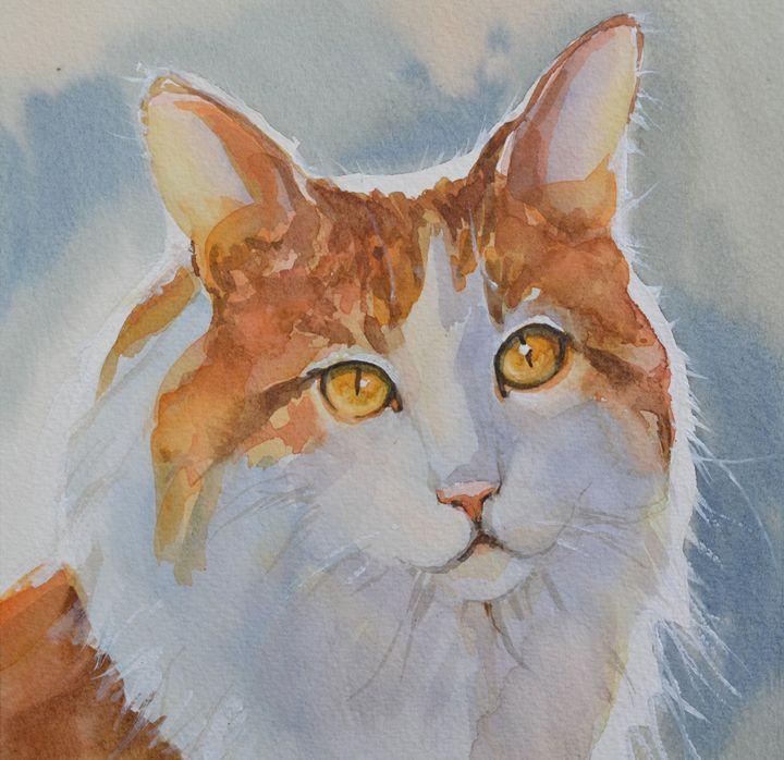 Red and white cat. - Irina Ushakova