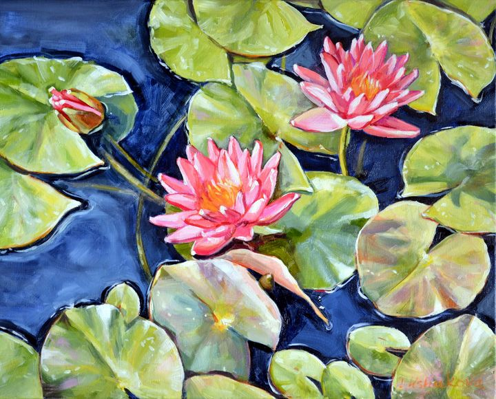 Pink Waterlilies - Irina Ushakova