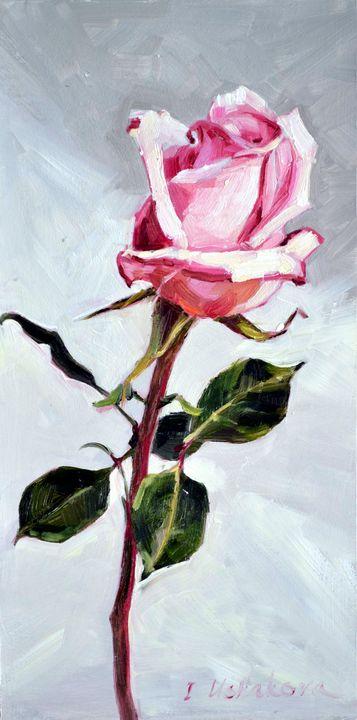 Rose 1 - Irina Ushakova