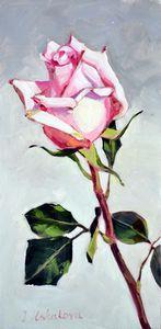 Rose 3 - Irina Ushakova