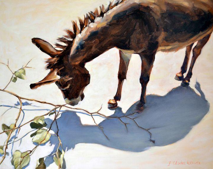 Donkey and its shadow. - Irina Ushakova