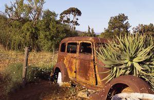 Old Rustic Car